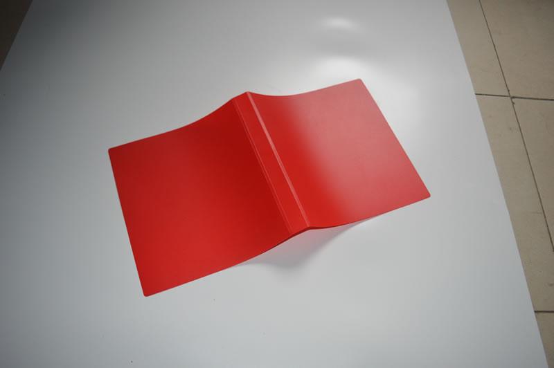 红色片材(文件夹) (4)