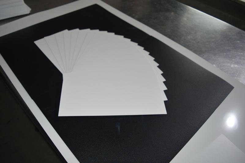 2.0mm白色PP片材 (4)